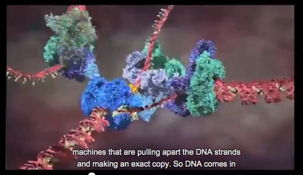 Astonishing Molecular Machines
