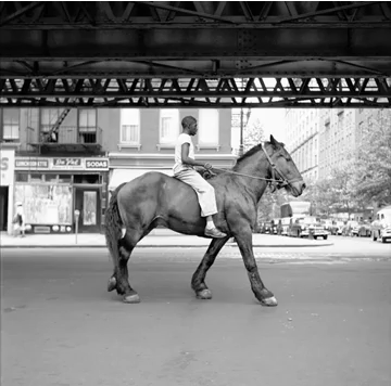Finding Vivian Maier